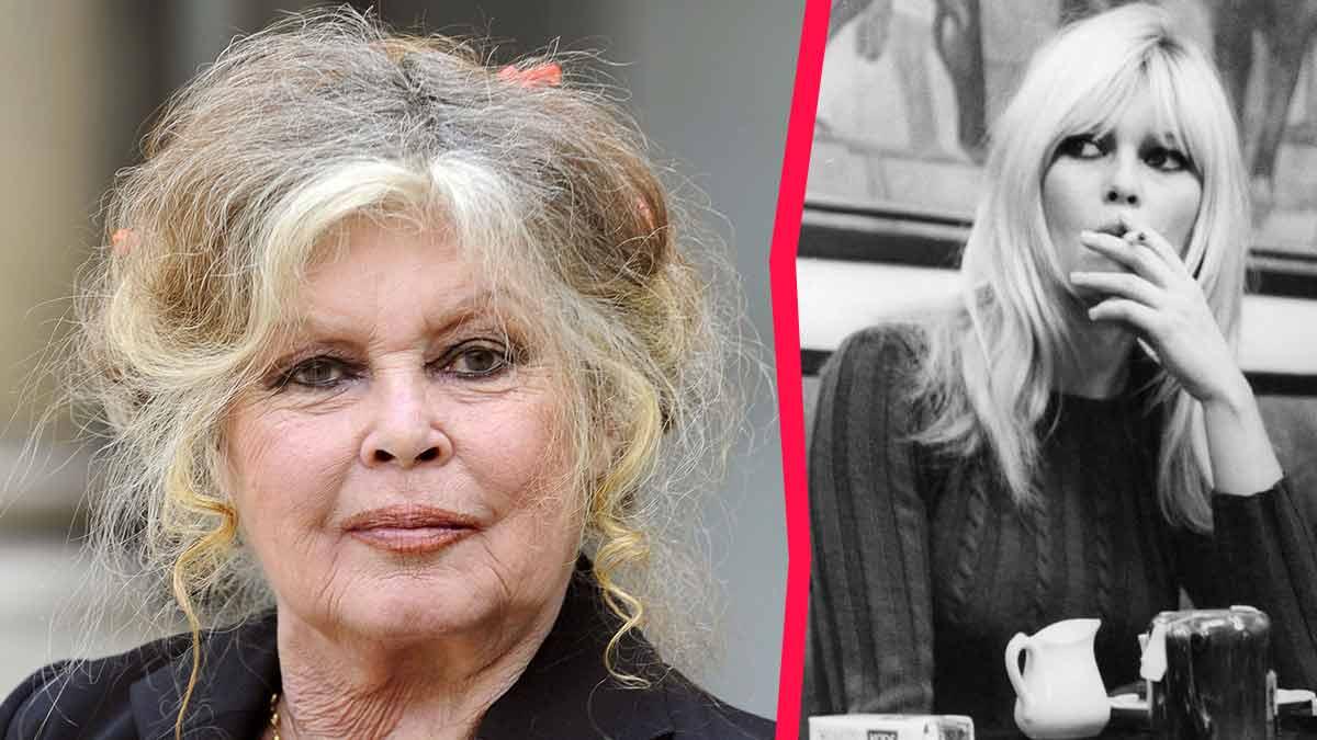 Gros coup de gueule : Brigitte Bardot quitte la France ! Découvrez pourquoi !