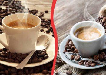 Le café : toutes ces choses que nous ne saviez pas sur cette boisson !