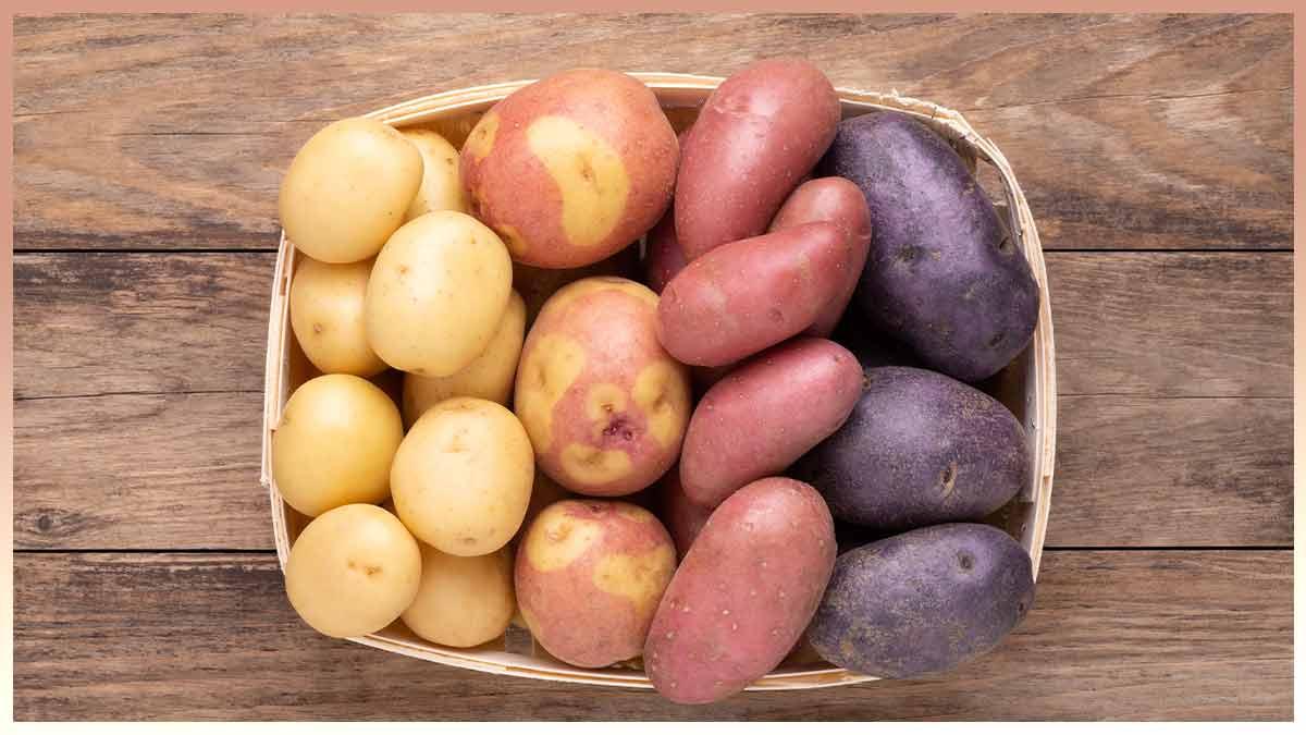 Pomme de terre : les erreurs à éviter pour sa cuisson !