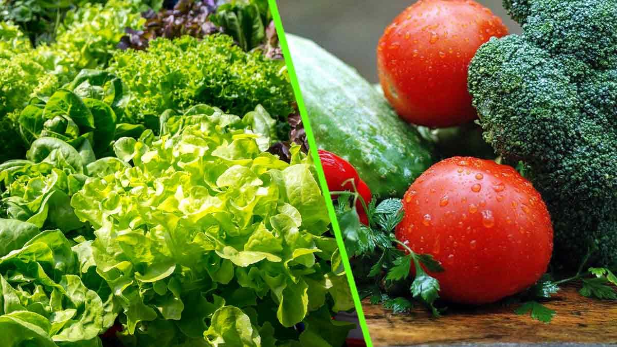 Alimentation : Ces légumes vous empoisonnent !