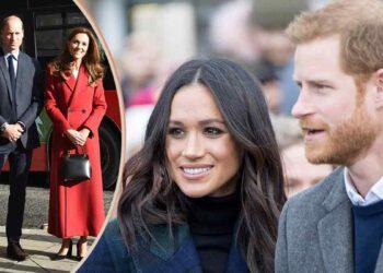 William et Harry très énervé contre Harry ! Nouveau scandale dans la famille royale !