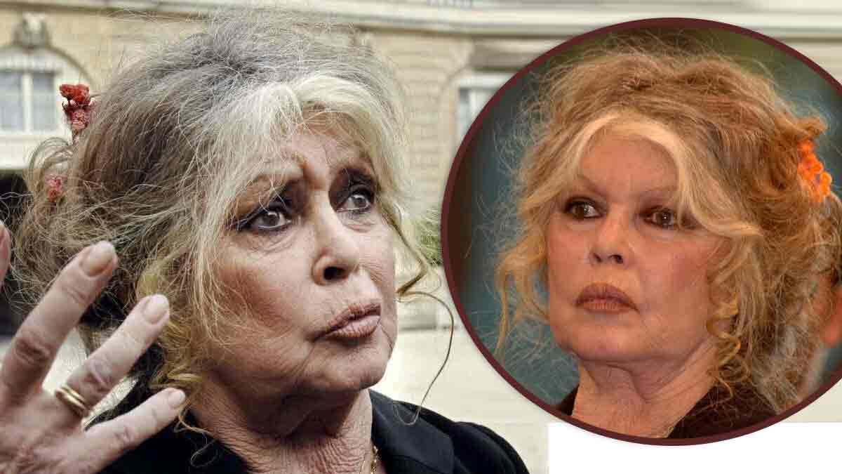 Brigitte Bardot « met la tête dans le four » ! Révélations sur ses suicides !
