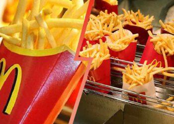 Frites McDo : Elles sont dangereuses ? Découvez ce qu'elles contiennent !