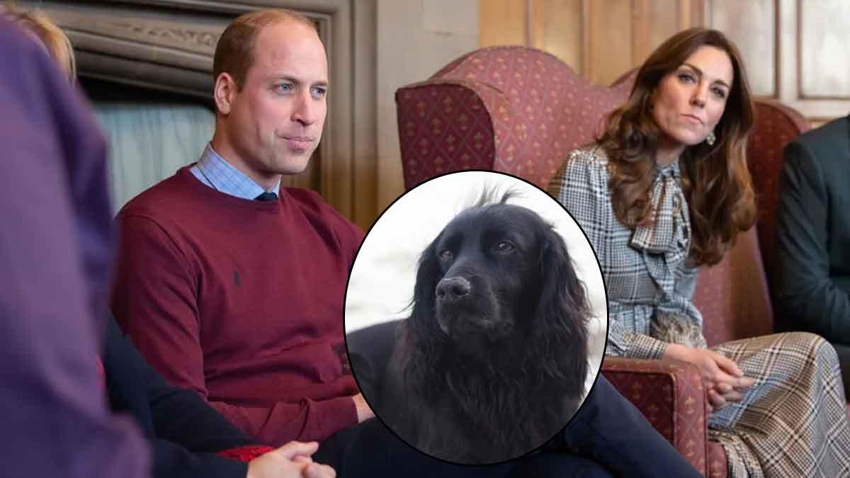 Kate Middleton et William : Un « résident du palais » décédé ? Gros deuil !