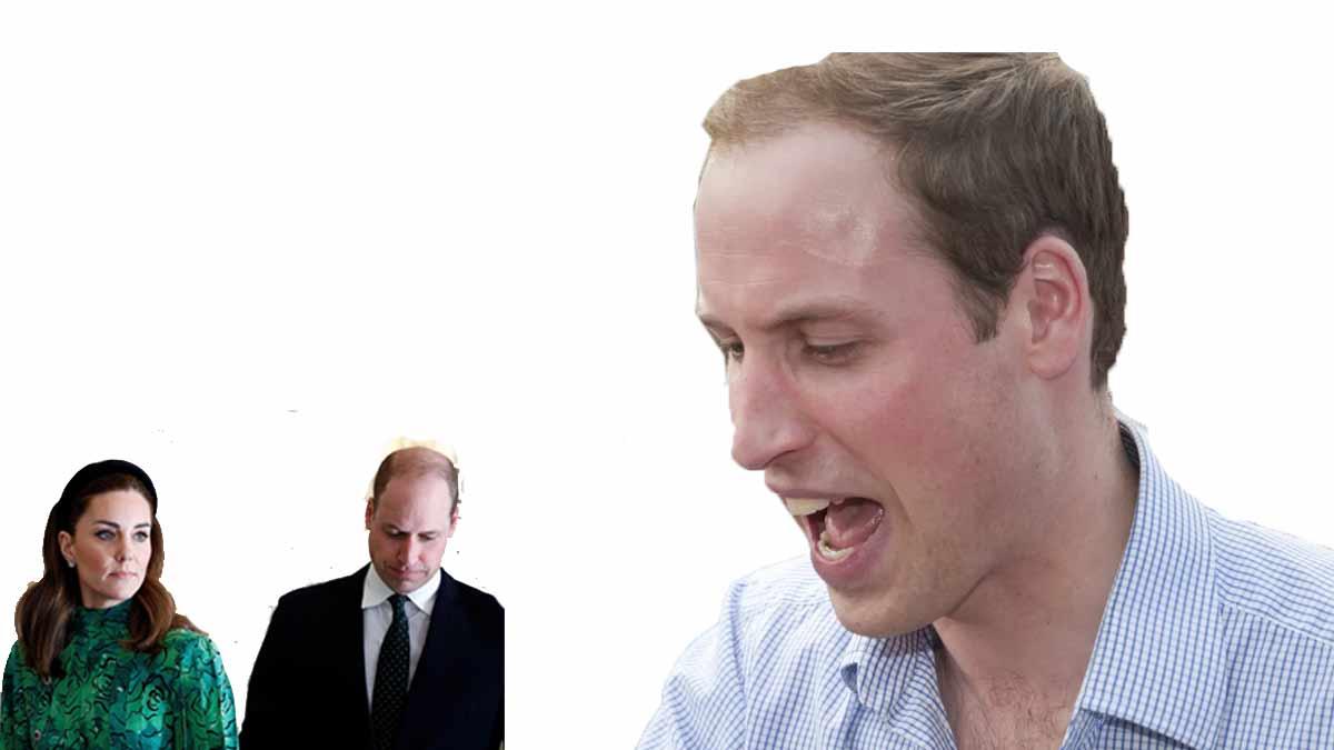 Lady Di, tentative de suicide, avortement ? William furieux contre les révélations d'Harry !