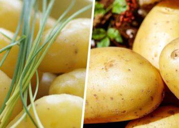 astuces-ne-ratez-plus-jamais-la-cuisson-de-vos-pommes-de-terre