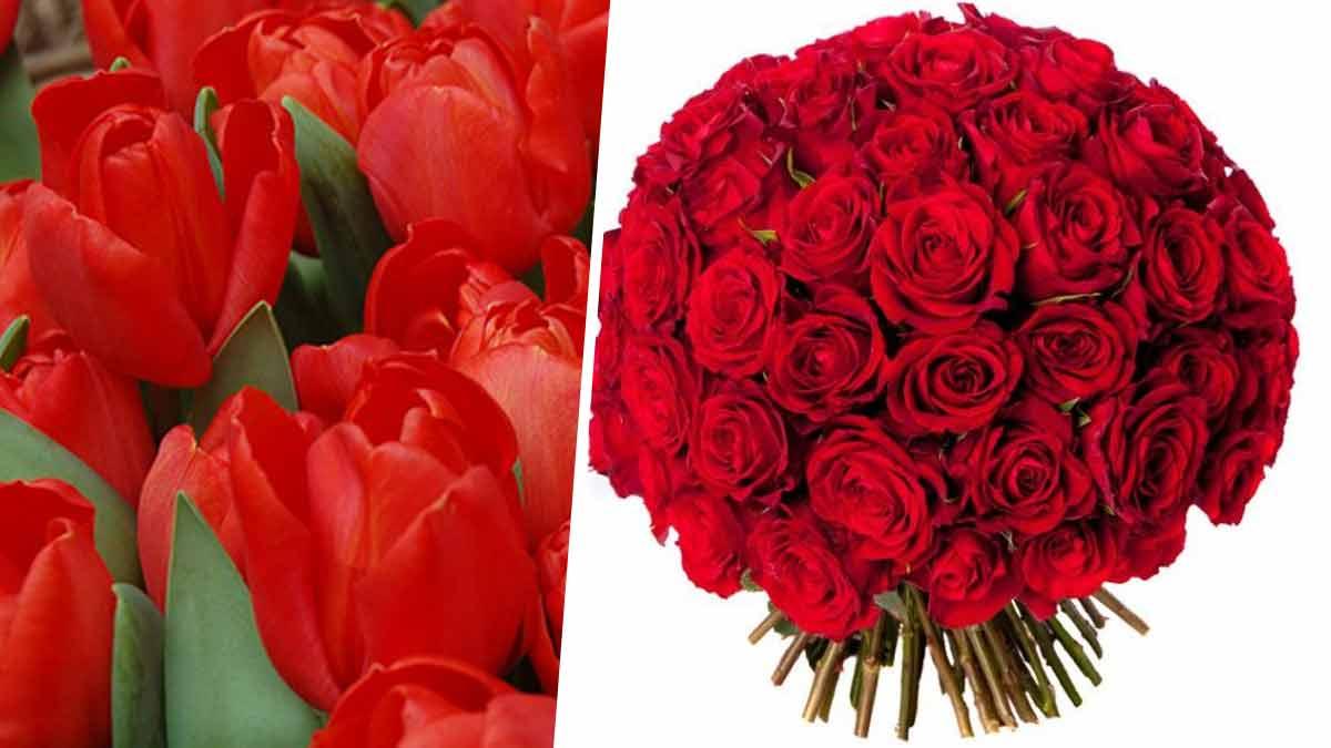 saint-valentin-decouvrez-le-langage-des-fleurs-pour-choisir-les-meilleures-a-offrir