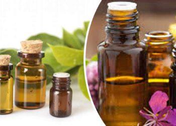 sante-cette-huile-essentielle-efficace-et-indispensable-pour-retrouver-un-sommeil-reparateur-pendant-lhiver